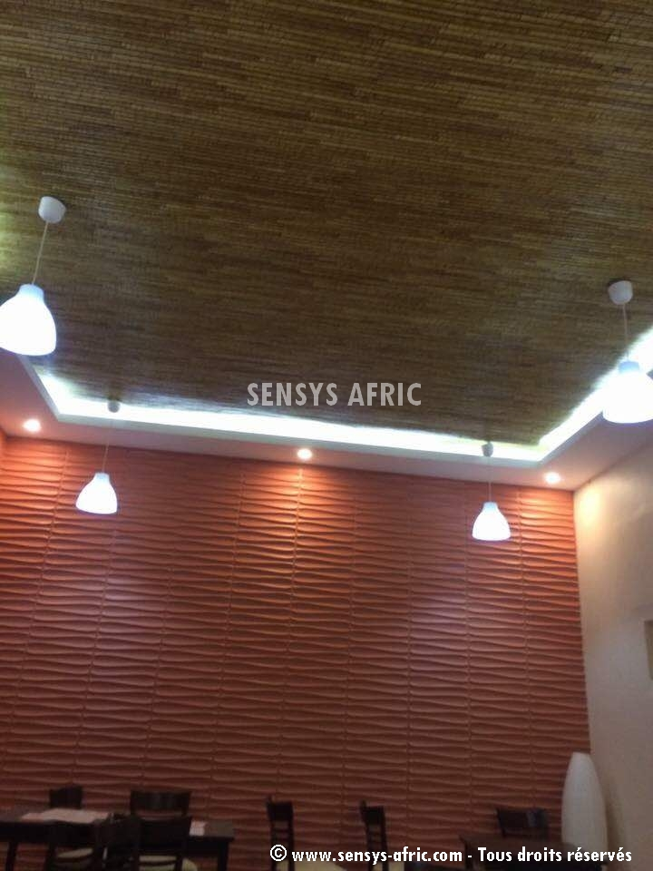 IMG-20180321-WA0069-1 Restaurant Mouquets  Sensys Afric - Laissez libre court à votre imagination
