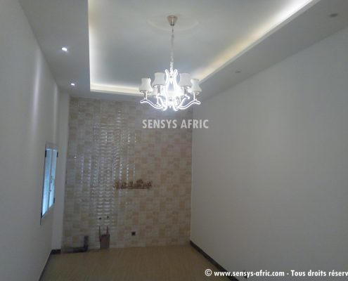 IMG_20171206_165737-495x400 Décoration salon, pièce à vivre ou de séjour